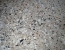 Exposed Aggregate Sample Photo 11